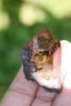 цитрин кристалл